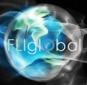fliglobal87x85